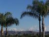 Southern California Snow 18