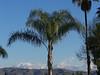 Southern California Snow 17