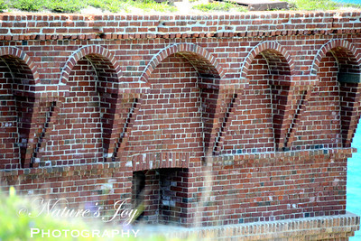 Fort Jefferson Dry Tortugas NP, FL May 2013