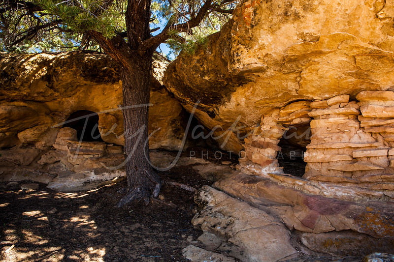 Double Ruin, Escalante, Utah