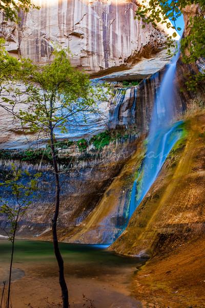 Calf Creek, Escalante, Utah