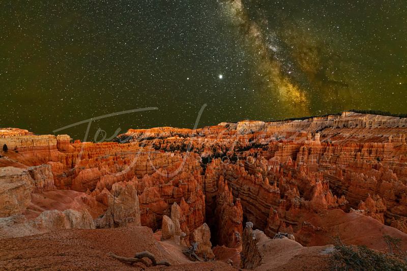 Bryce Canyon under the Milky Way