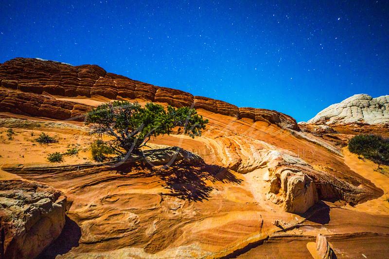Moon-glow at White Rock, AZ