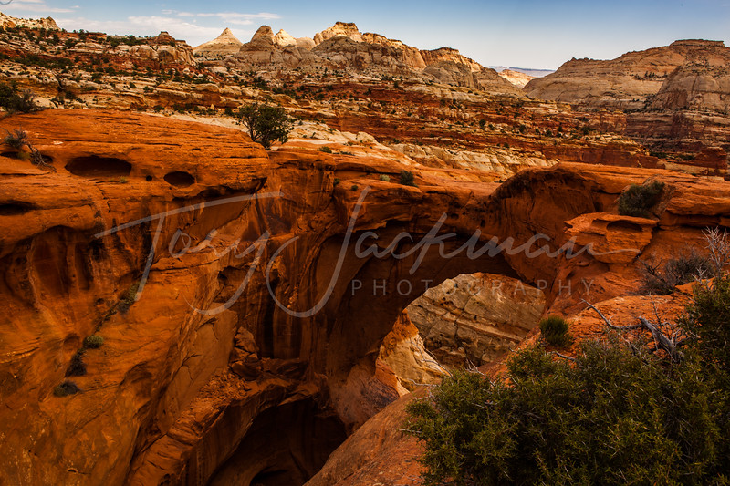 Capitol Reef National Park, Cassidy Arch