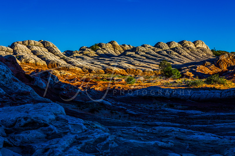 White Rock Landscape in Arizona
