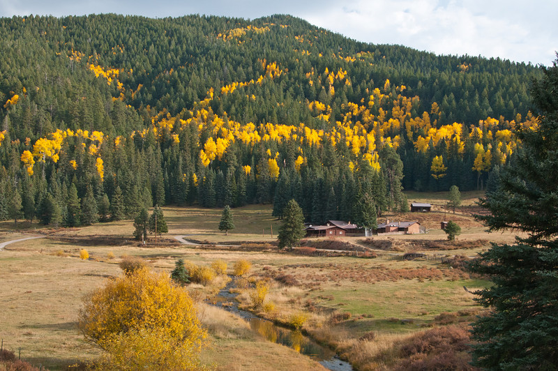 Fall in the Jemez Mountains,New Mexico