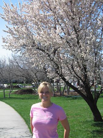 Spring in Provo, Utah