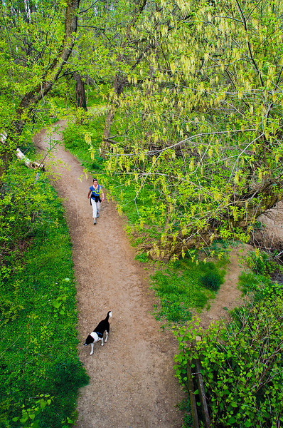 A woman and her dog enjoy springtime walking along the Valley Trail in Rock Creek Park.
