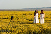 Two girls in white dresses taking selfies in the flower fields at Carrizo Plain National Monument, just after dawn on a night that had gotten down to 32 degrees F.