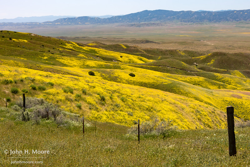 Looking down into the valley of Carrizo Plain National Monument from high in the Temblor Mountains.
