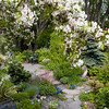 Spring in Rundle WoodGardens, Calgary, Alberta