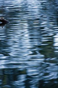 2007 31 Dec 336_edited-1