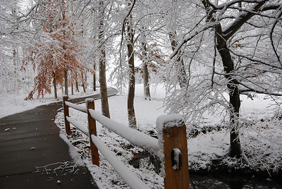 North Carolina Winter