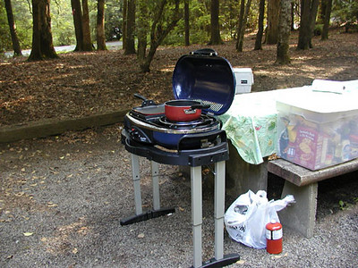Does this look familiar, Skip??<br /> Coleman grill -thanks for the great advice!  It works like a charm.<br /> Standing Indian Campground, NC
