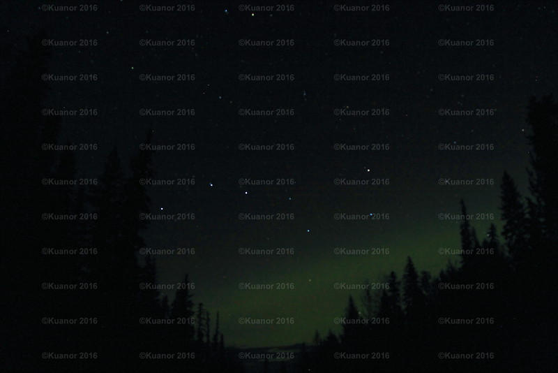North<br /> Ursa Major and a glamer of the aurora, somewhere between Prince George and Jasper. It was quiet there, save for a single predatory canine yip, and once the rustle of some large animal in the dark under the tree branches.