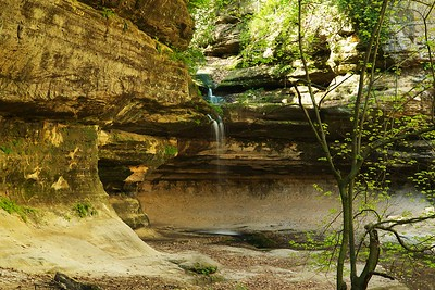 The little waterfall at the head of LaSalle Canyon. There are two bank swallows on the branch just to the right of the top of the fall who actually held somewhat still for half a second.