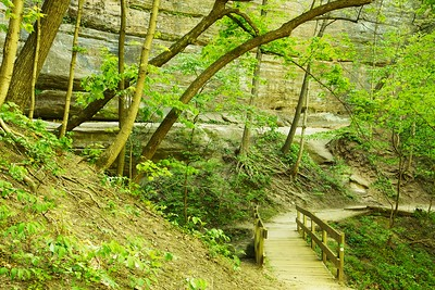 The trail through LaSalle Canyon.