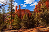 Red Canyon State Park, Dixie National Forest, U