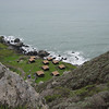 Steep Ravine Cabins from above