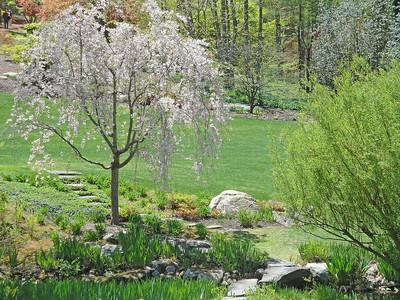 Steinhardt Gardens on May 5, 2013