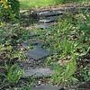 Rock path through a garden.