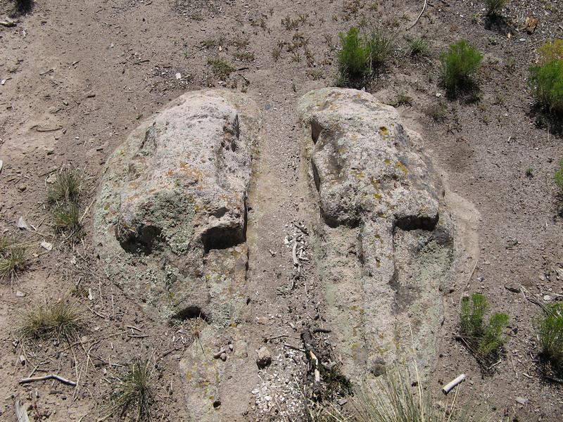 Stone Lions.