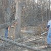 Volunteers help remove broken timber at the Hill residence north of St. Elmo after Sunday's storms.