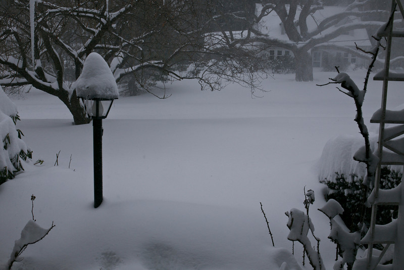Charlotte brought record-breaking amounts of snow to Connecticut.