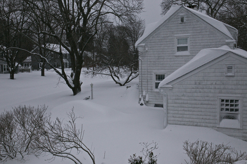 Our neighbor's car, parked outside, is completely covered.