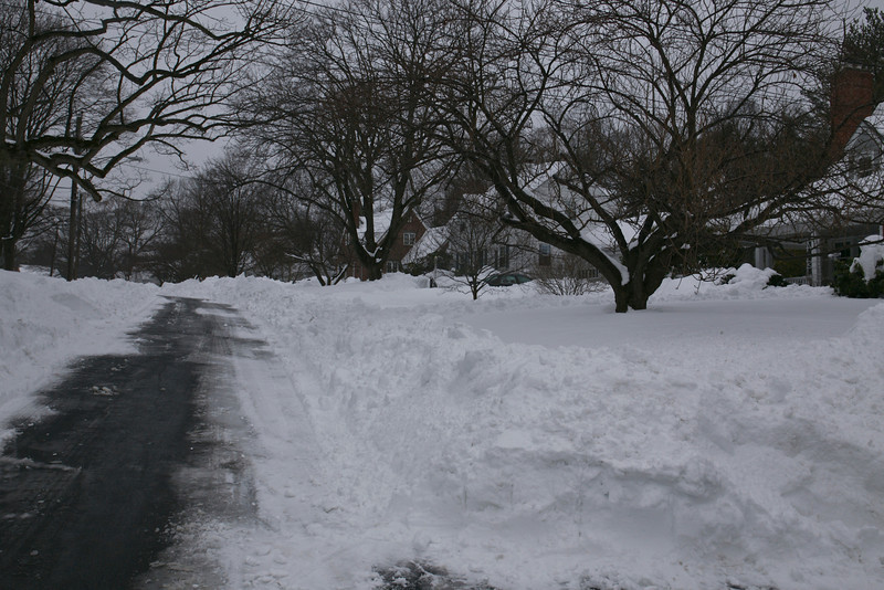 Pickwick Road, was finally plowed on Monday. Schools, many offices were closed until Wednesday, others for the entire week.