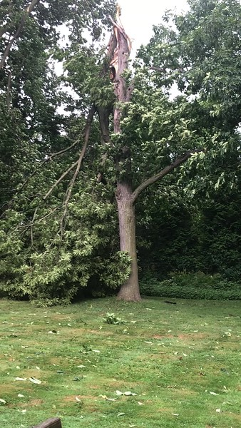 Hurricane Isaias hit the  Hamden-New Haven area with 70 mph winds.