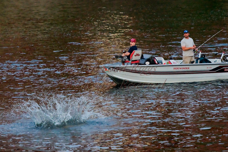 Two fishermen react as a jumping sturgeon makes a noisy splash beside their boat on the Kennebec River at Augusta, Maine.