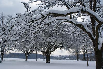 Stuttgart im Winter
