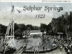 Sulphur Springs mapping project in Tampa, Florida was conducted as a part of City of Tampa ongoing efforts to study groundwater patterns; eventually leading to identification of salt water intrusions into this freshwater spring.