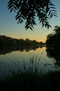 Beaverdam Lake, Summer 2010