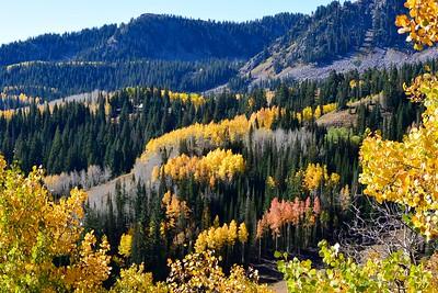Summer & Fall 2015: Colorado, California & Utah
