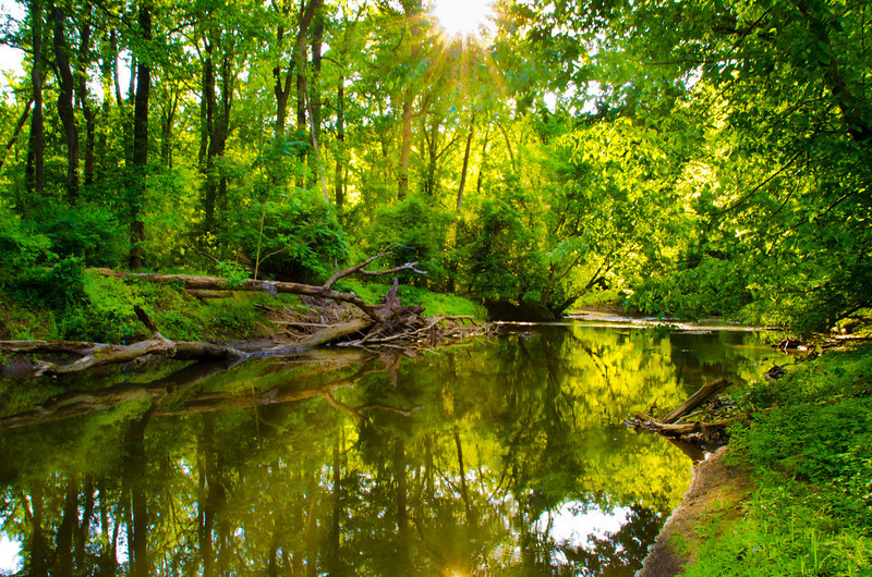 BB, Rock Creek Park