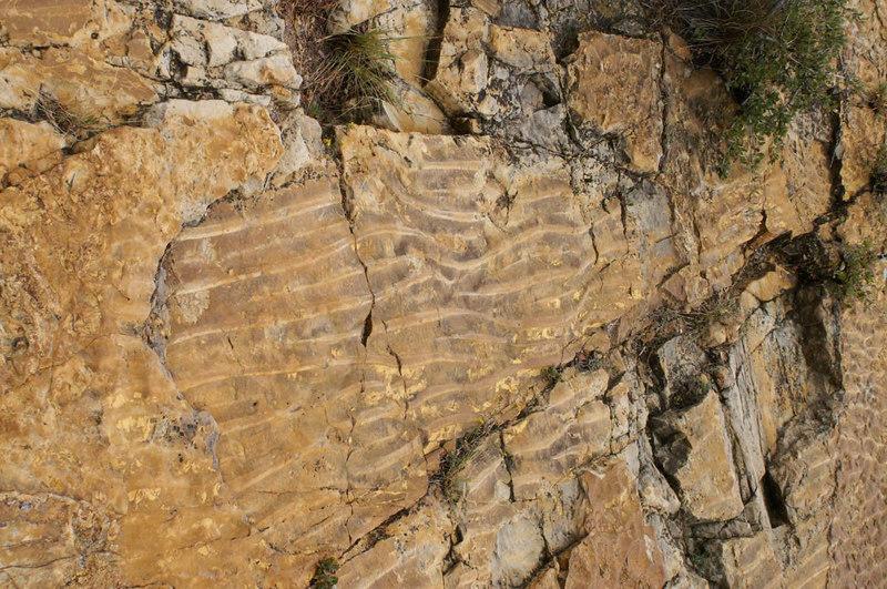 ripples, Dinosaur Ridge, W. Alameda Parkway, Morrison, Colorado