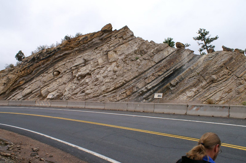 tilted strata, Dinosaur Ridge, W. Alameda Parkway, Morrison, Colorado