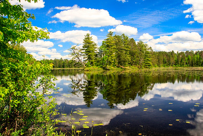Summertime River Reflections  2