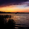 A Wildcat Sunset 2
