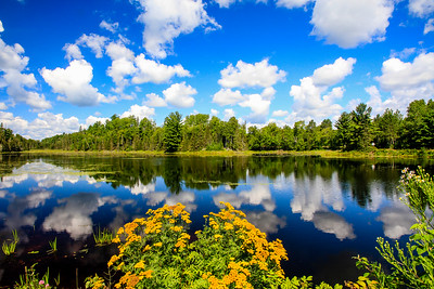 Colorful Summer Reflections  1