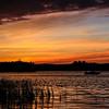 A Wildcat Sunset  3