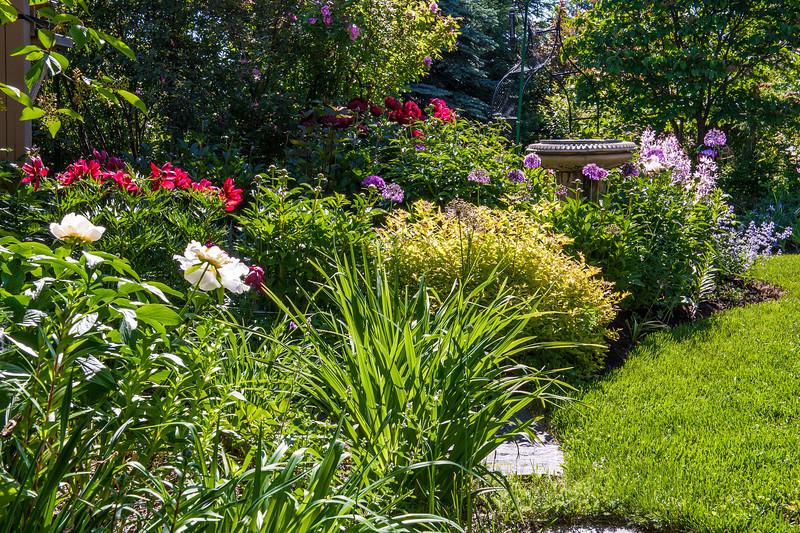 Braun Garden 2013