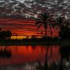 Sun City sunset 1-22-17KV9A1707