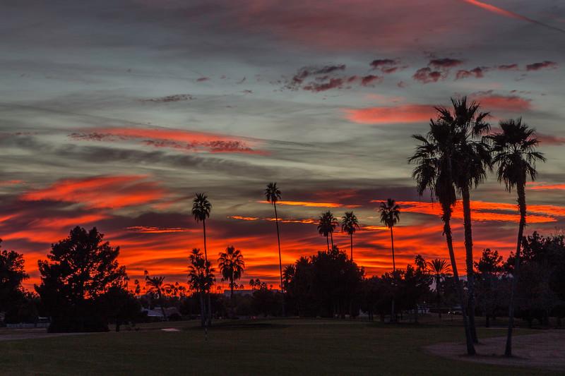Sun City sunset 1-10-17_MG_2882