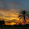 Sun City sunset 1-16-17KV9A1658
