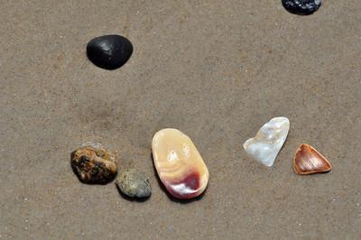 Onslow Beach Shells Stones1