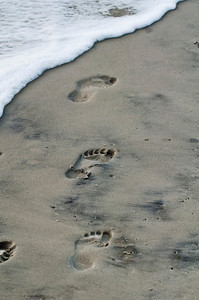 Hilton Head Footprints