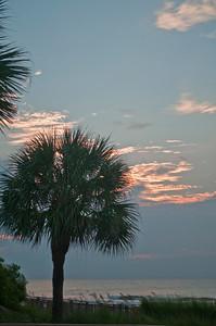Hilton Head Tree Sunrise